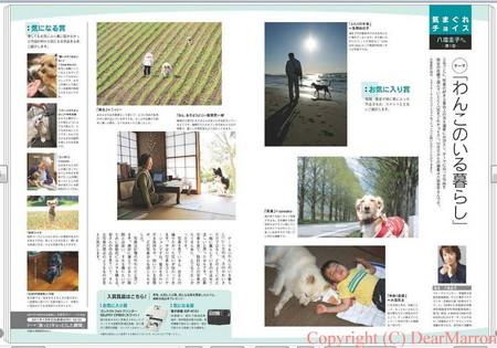 まりりん写真コンテスト.jpg