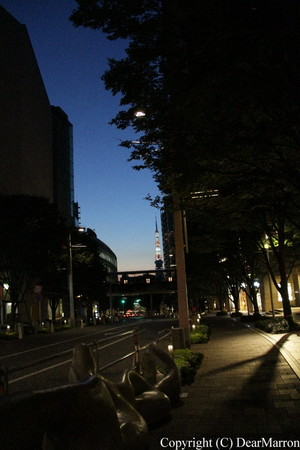 IMG_5798.jpg