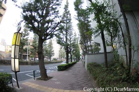 IMG_6411.jpg